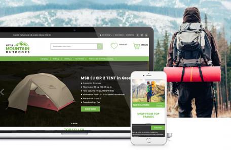 Magento 2 Website Design & Development with eBay/Amazon Integration